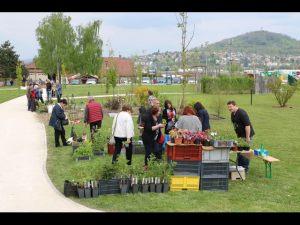 2017-04-22-Noidans-Troc-Plantes-4231