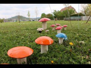 2017-04-22-Noidans-Troc-Plantes-4259