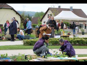 2017-04-22-Noidans-Troc-Plantes-4325