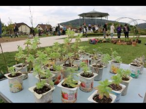 2017-04-22-Noidans-Troc-Plantes-4328