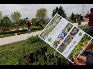 2017-04-22-Noidans-Troc-Plantes-4356