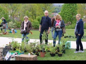 2017-04-22-Noidans-Troc-Plantes-4371